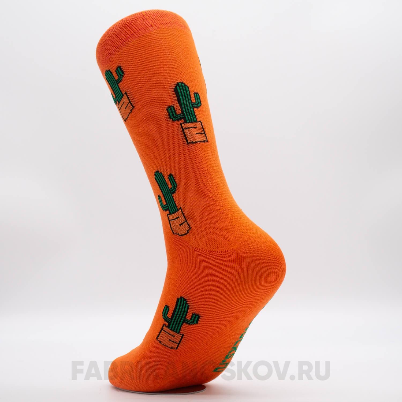Мужские носки с кактусами